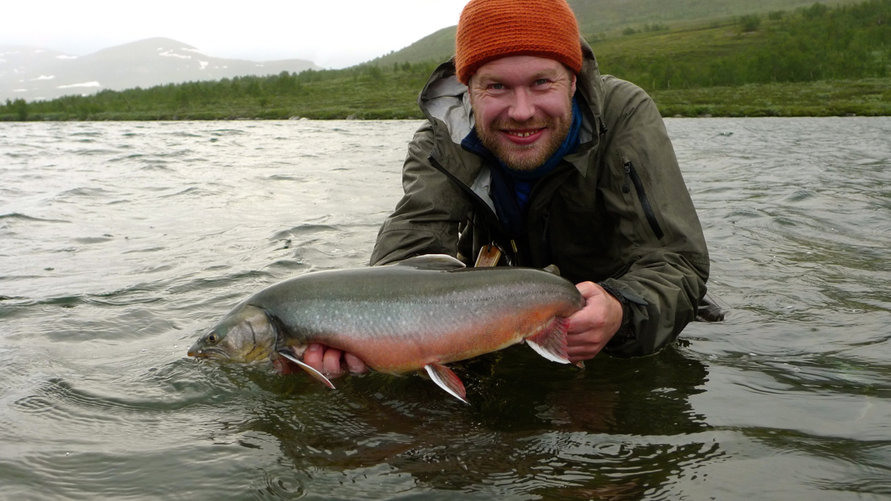 Jazz fly fishing tough love arctic char style for Arctic char fish